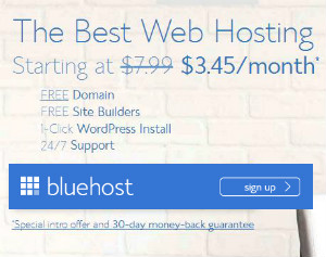 Blue host at $3.95 per month